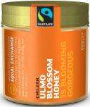 Equal Exchange Fair Trade Chilean Ulmo Blossom Honey 500g x10
